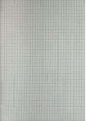 DUBBELPAPIER A4 COMMERCIAAL 90GR WIT 500 VEL