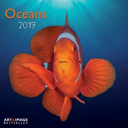 KALENDER 2019 TENEUES ART & IMAGE OCEANS 30X30CM 1 STUK