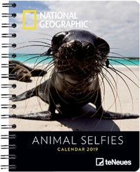 AGENDA 2019 TENEUES NAT GEO ANIMAL 16.5X21.6CM 1 STUK